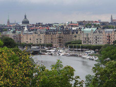 City, Stockholm, Sweden, Camera, Zoo, Photo, Animals