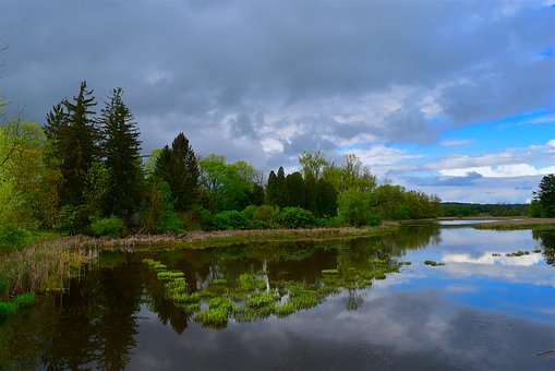 Lake, Trees, Sky, Clouds, Color, Scene, Blue, Nature