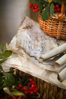 Basket, Berry, Red, Green, Nature, Autumn, Rowan, Fruit