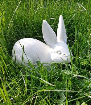 Easter, Hare, Rabbit, Spring, Animal