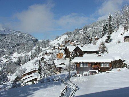 Wengen, Acher, Village, Snow, Winter, Day, White