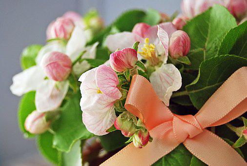 Flowers, Apple-blossom, The Buds, Spring