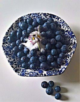 Blueberries, Bickbeeren, Vaccinium, Blueberry