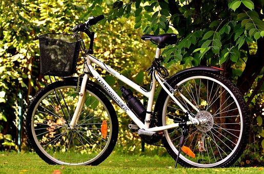 Bicycles, Cycle, Bike, Wheel, Cycling, Sport