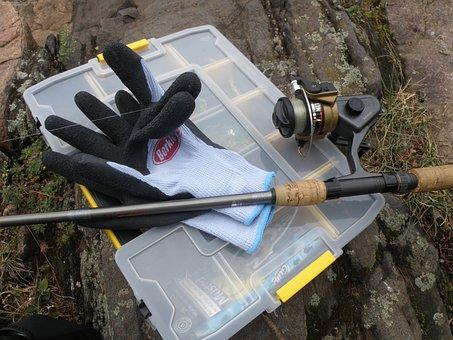 Fish, Fishing, Fishing Rod, Tackle Box, Glove, Nature