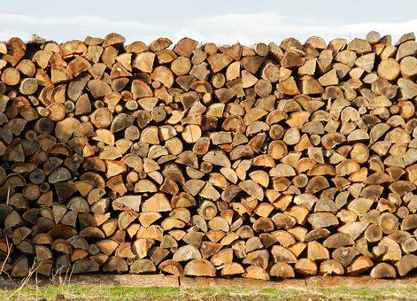 Wood, Heap, Stacked, Brown, Logs, Cup, Heating, Forest