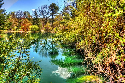 Spring, Pond, Trees, Nature, Landscape, Water, Outdoor