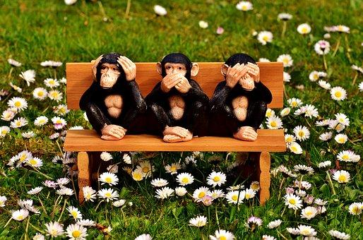 Not Hear, Not See, Do Not Speak, Ape, Sit, Bank
