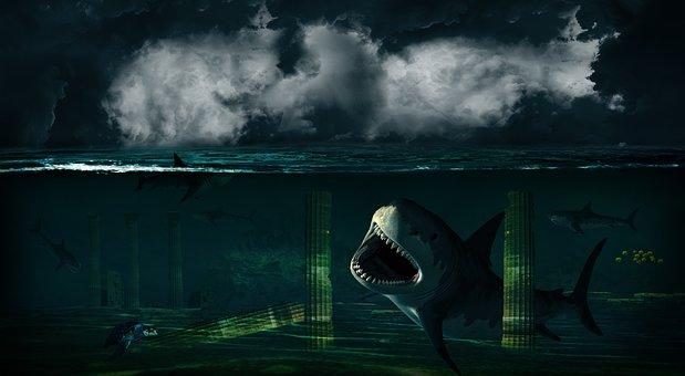 Underwater, Hai, Turtle, Fish, Ocean, Wave, Sea, Temple