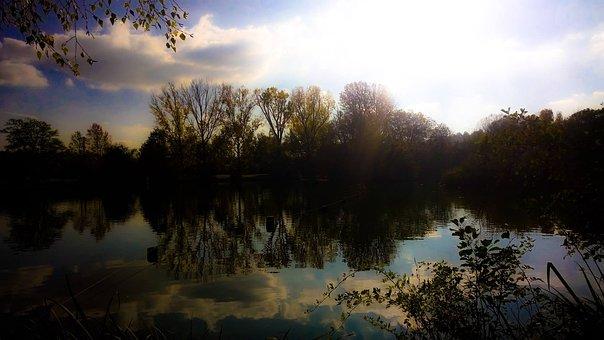 Landscape, Lake, Nature, Trees, Water, Bank