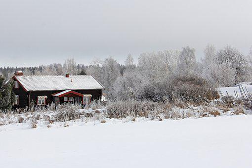 All White, Cover, Snow, Winter, Cold, Beautiful, Red