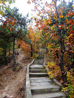 China, Stairs, Autumn, Colorful, Leaves, Rise, Höhenweg