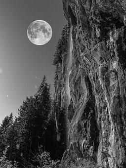 Full Moon, Night, Rock, Forest, Alpine, Darkness