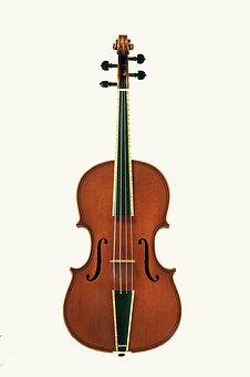 Violin, Stringed Instruments
