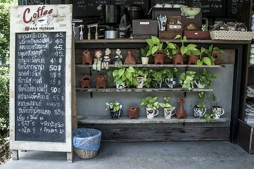 Craft, Plant, Furniture, Shop, Coffee