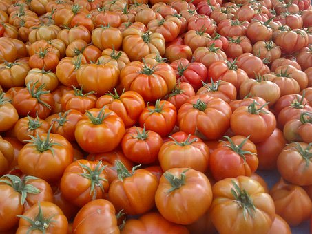 Tomato, Red, Food, Healthy, Fresh, Vegetable, Plant