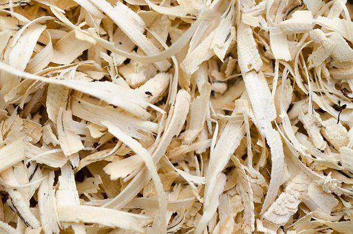 Wood, Sawdust, Background, Texture, Material