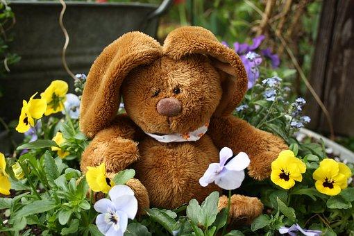 Easter, Hare, Easter Bunny, Teddy Bear, Flowers, Spring