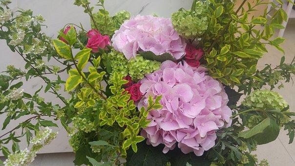 Hydrangea, Ikebana, Flower Painting Vase