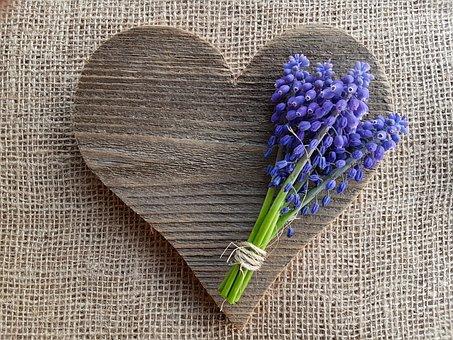 Flowers, Grape Hyacinths, Heart, Love