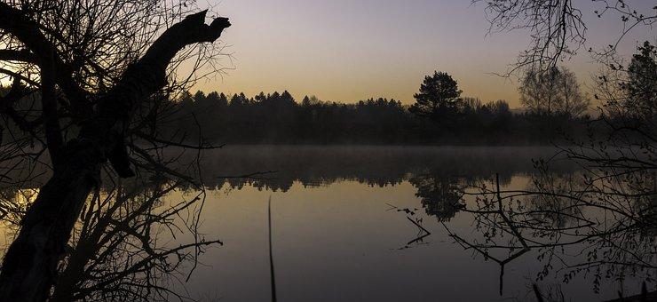 Water, Morning, Sunrise, Nature, Mood, Pond