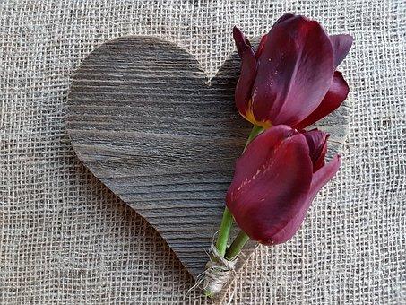 Flowers, Tulips, Heart, Love