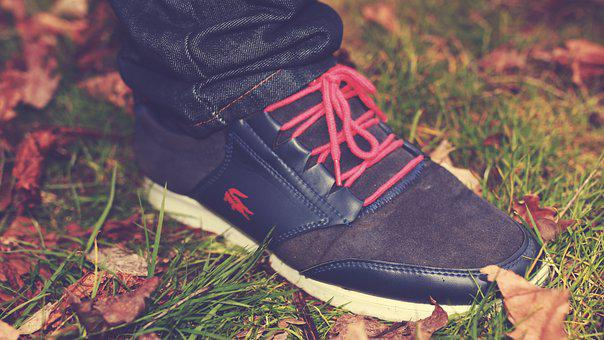 Lacoste, Trainers, Shoes, Leaves, Autumn, Lifestyle