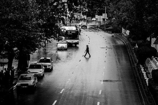 Street, Avenue, Traffic, Man, Human, Walk