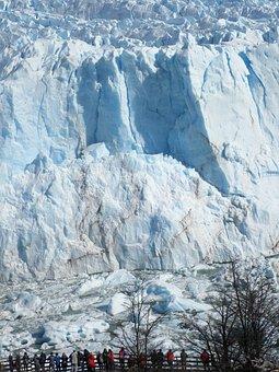 Calafate, Ice, Patagonia, Glacier, Argentina