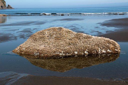 Ocean, Rock, Stone
