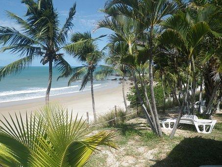 Beach, Sunny Day, Natal