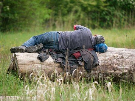 Tired, Workers, Sleep, Break, Log, Nature, Man