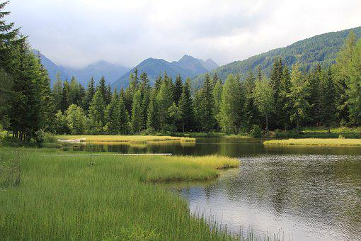 Bergsee, Forest, Mountains, Water, Nature, Landscape