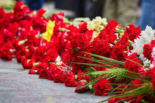 Victory Day, Flowers, Memory, Carnation, May 9