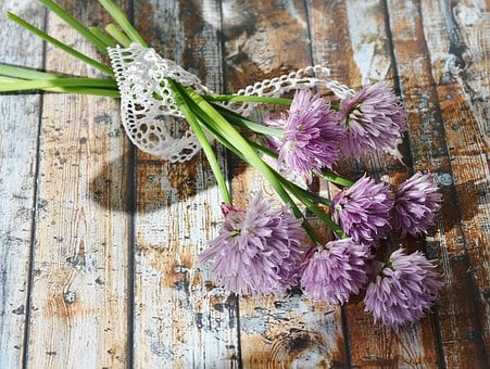 Chives, Blossom, Bloom, Chive Flowers, Close, Nature