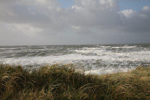 Forward, Sea, Wind, Wave, Water, Swell, Clouds, Mood