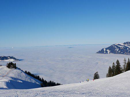 Mountain, Skiing, Sea Of Fog, Mountains, Fog, Winter