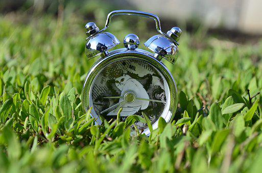 Clock, Alarm Clock, Watch, White Cat, Closeup, Accuracy