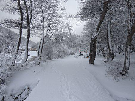 Snow, Holidays, Tourism