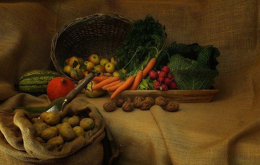 Harvest, Vegetable, Agriculture, Fresh, Healthy, Food