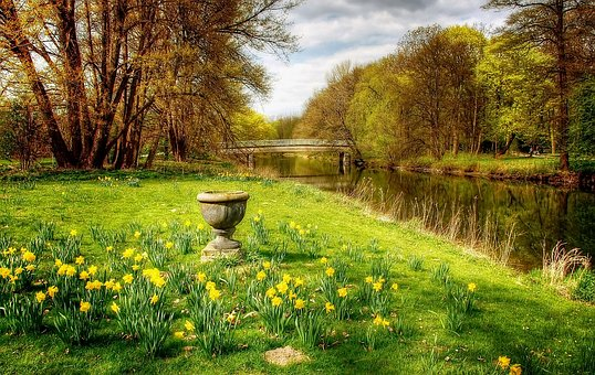 Braunschweig, Oker, Water, River, Nature, Germany