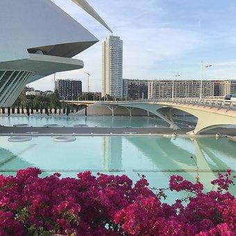 Architecture, Calatrava, Valencia, Spain