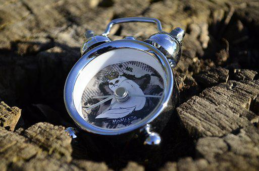 Clock, Alarm Clock, Dial, Time, Closeup, Accuracy
