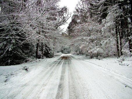 Snow, White, Winter, Snow White, Christmas, Season