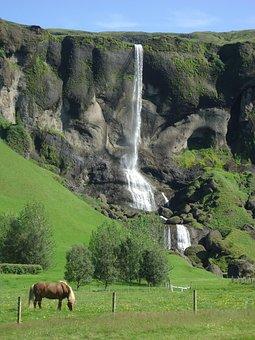 Cascade, Horse, Iceland