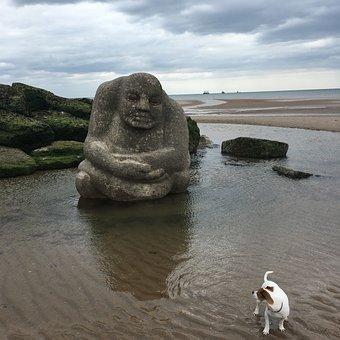 Watching, Dog, Beach, Jack Russell, Watching You, Humor