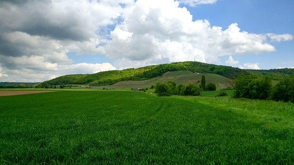 Landscape, Nature, Sky, Vineyard, Bavaria, Germany
