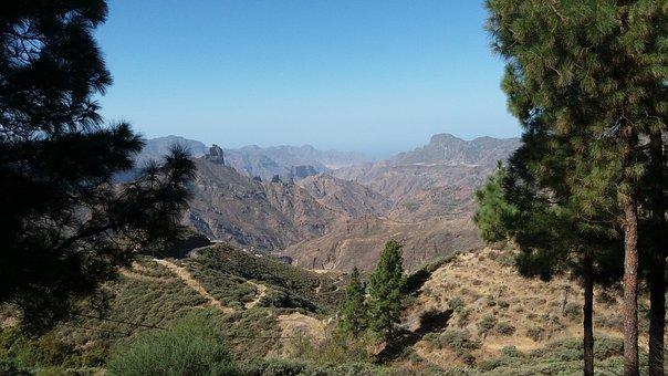 Nature, Canary Islands, Spain, Gran Canaria, Mountain