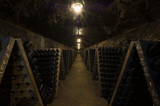 Caves, Anadia, Bairrada, Wines, Pupitres