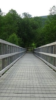 Boardwalk, Planks, Wooden, Path, Trail, Footpath